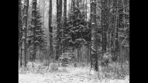 Thumbnail for entry WINTER NOTE (excerpt) Mika Altskan