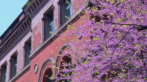 Thumbnail for entry Spring Fest