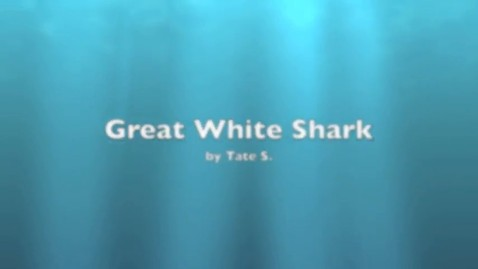 Thumbnail for entry Tate Great White Shark
