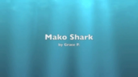 Thumbnail for entry Grace Mako Shark