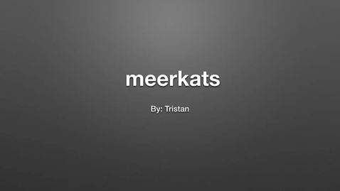 Thumbnail for entry Meerkats: by Tristan