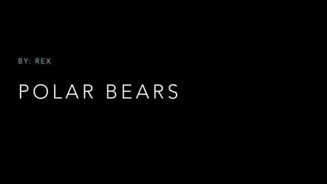 Thumbnail for entry Polar Bears: by Rex