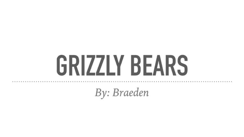 Thumbnail for entry Grizzly Bears: by Braeden