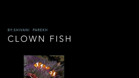 Thumbnail for entry Clown Fish: by Shivani