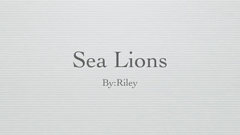 Thumbnail for entry Sea Lions: by Riley