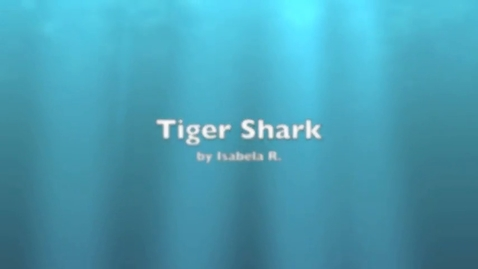 Thumbnail for entry Isabela Tiger Shark
