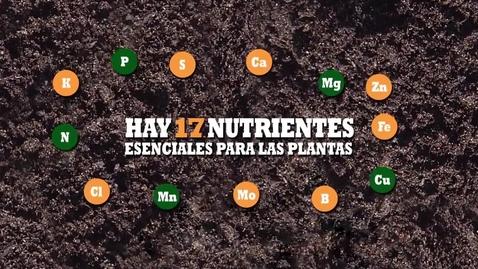 Miniatura para la entrada Nutrientes