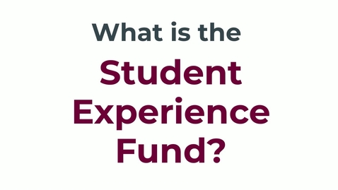Thumbnail for entry Student Experience Fund (SEF) - Social Sciences