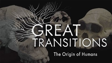 Thumbnail for entry Great Transitions: The Origin of Humans — HHMI BioInteractive Video