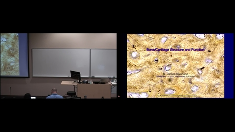Thumbnail for entry IMSK - Bone Structure and Function (Lecture - Dr. Swanson)