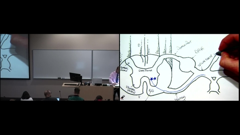 Thumbnail for entry IMSK - Electrical Properties of Membranes (Lecture - Dr. Wells)