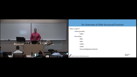 Thumbnail for entry BFOM - Gene Transcription and mRNA Processing (Lecture - Dr. Pelletier)