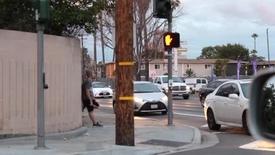 Thumbnail for entry My Santa Ana