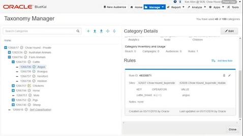 Thumbnail for entry Oracle Data Cloud Taxonomy Manager - RULES