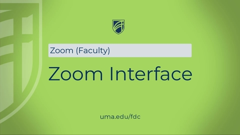Thumbnail for entry Zoom Interface