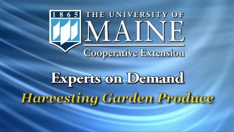 Thumbnail for entry Harvesting Garden Produce