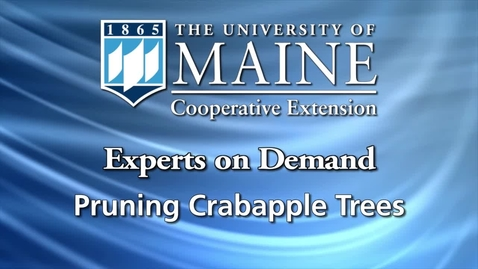 Thumbnail for entry How to Prune a Crabapple Tree