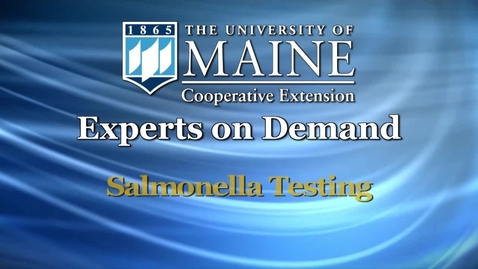 Thumbnail for entry Testing Eggs for Salmonella at UMaine