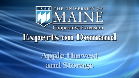 Thumbnail for entry How to Harvest and Store Apples in Maine
