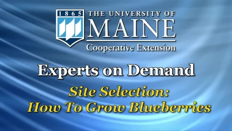 Thumbnail for entry Site Selection: How to Grow Blueberries
