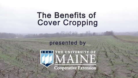 Thumbnail for entry Benefits of Cover Cropping