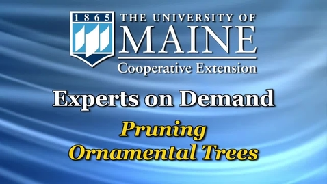 Thumbnail for entry Pruning Ornamental Trees