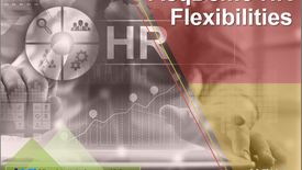 Thumbnail for entry AcqDemo HR Flexibilities