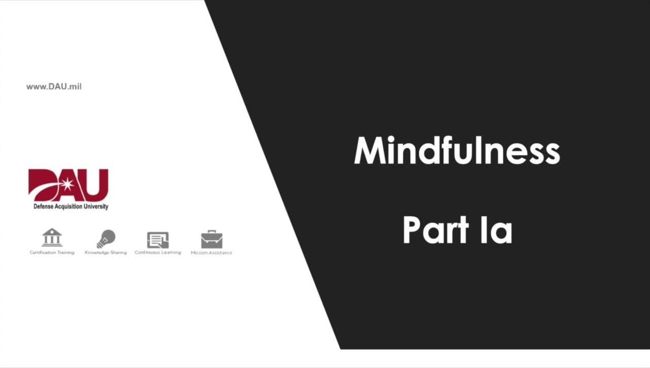 1.0 Mindfulness Part 1a