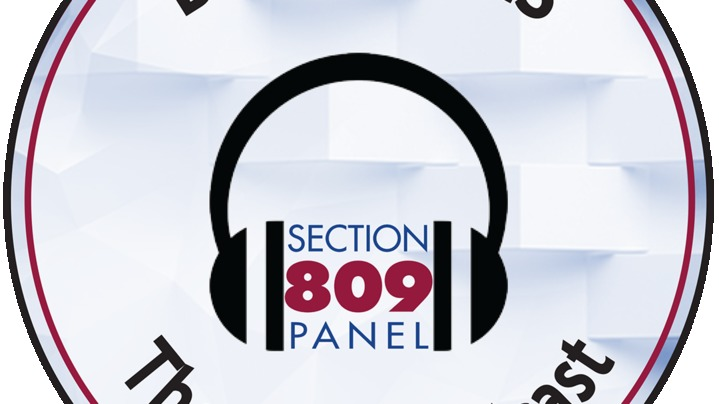 Thumbnail for channel Section 809 Panel