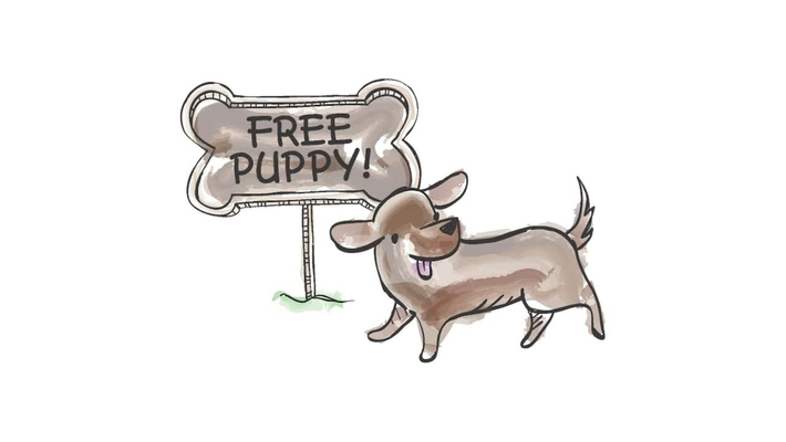 The Acquisition Moment: Free Puppy (or Why O&S is the Major Cost of a Program)
