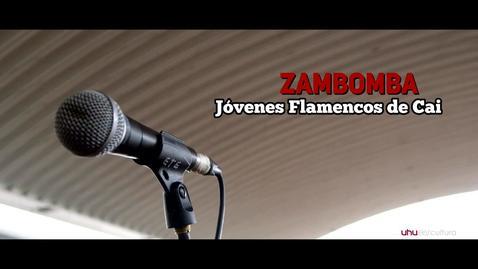 Miniatura para la entrada Zambomba flamenca: Jóvenes Flamencos de Cai