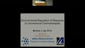 Thumbnail for entry Environmental regulation of response to conventional chemotherapies