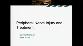 Thumbnail for entry Peripheral Nerve Injury and Treatment