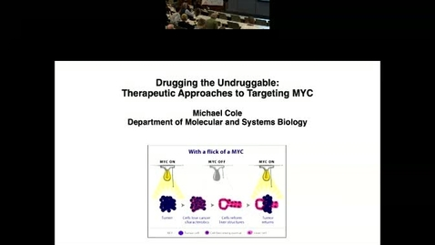Thumbnail for entry Drugging the Undruggable: Therapeutic Approaches to Targeting MYC