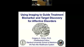 Thumbnail for entry Using Imaging to Guide Treatment Biomarker and Target Discovery for Affective Disorders