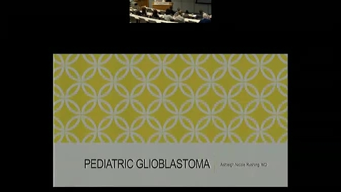 Pediatric Glioblastoma: What We Have Learned Over The Last Twenty Years.