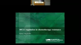 Thumbnail for entry MCL1 Regulation in Chemotherapy Resistance