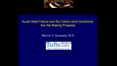 Acute Heart Failure and the Cario-renal Syndrome: Are We Making Progress