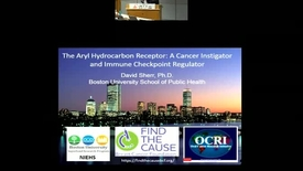 Thumbnail for entry The Aryl Hydrocarbon Receptor: A Cancer Instigator and Immune Checkpoint Regulator