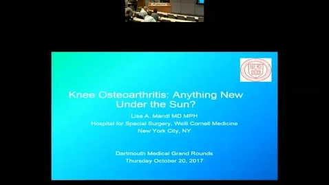 Knee Osteoarthritis: Anything New Under the Sun?