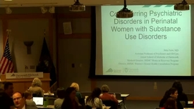 Thumbnail for entry NNEPQIN - Co-occurring Psychiatric Disorders in Perinatal Women with Substance Use Disorders