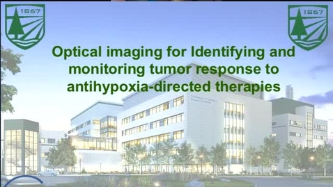 Optical Imaging for Identifying and Monitoring Tumor Response to Antihypoxia-Directed Therapies