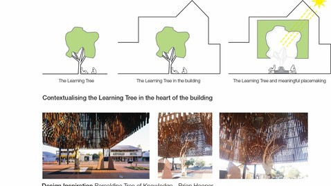 Picture 17 - Learning tree concept