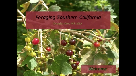 Thumbnail for entry Douglas Kent - Foraging Southern California