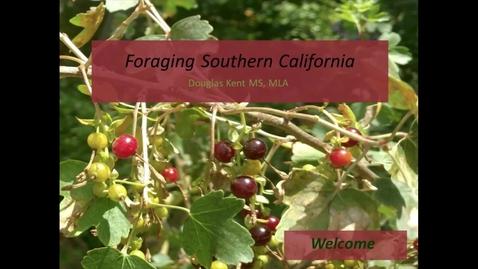 Thumbnail for entry Douglas Kent - Foraging Southern California