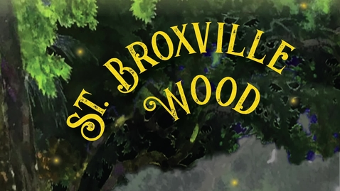 Thumbnail for entry St. Broxville Wood Video Tour