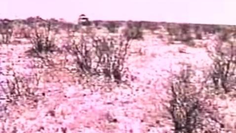 Thumbnail for entry Bushmen Of The Kalahari