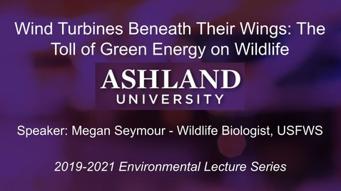 Thumbnail for entry Wind Turbines Beneath Their Wings: The Toll of Green Energy on Wildlife -