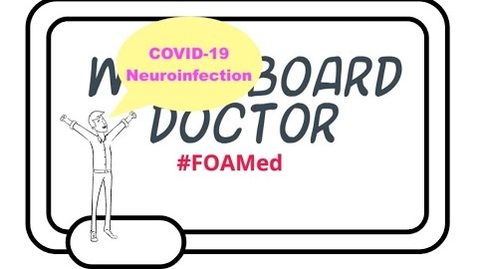 Thumbnail for entry COVID-19 Neuroinfection, Theories as to SARS-CoV-2 and the Possibility of Brain Involvement.