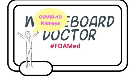 Thumbnail for entry COVID-19 and the Kidney, Why Are We Seeing So Much Kidney Involvement?